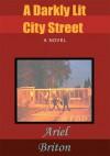 A Darkly Lit City Street - Ariel Briton