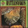 Rattlesnakes - Eric Ethan