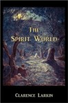 The Spirit World [Illustrated] - Clarence Larkin