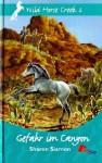 Gefahr im Canyon (Wild Horse Creek #2) - Sharon Siamon, Albert Baier
