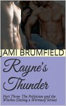 Rayne's Thunder (Part Three): The Politician and The Witches (Dating a Werewolf Series) - Jami Brumfield, Michele Gwynn
