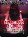 Torrid Teasers Volume 30 - Harris Channing