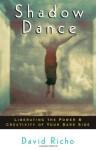 Shadow Dance: Liberating the Power & Creativity of Your Dark Side - David Richo