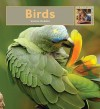 Birds - Valerie Bodden