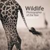 Wildlife Photographer Of The Year Portfolio 21 - Rosamund Kidman Cox