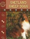 Shetland Sheepdogs - Lynn M. Stone