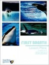Killer Whale Lesson Plan Grade 6-8 - Lunchbox Lessons