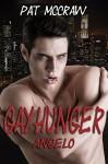 Gayhunger 2 - Angelo / Gay Romance / Vampirroman - Pat McCraw