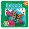 First Look at Insects [With eBook] - Laura Gates Galvin, Charlotte Oh