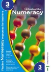 Classworks (Classworks Numeracy Teacher's Resource Books) - Mike Spooner, Thelma Page