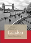 A Short History of London - Sinead Fitzgibbon