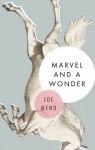 Marvel and a Wonder - Joe Meno