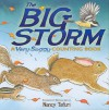 The Big Storm: A Very Soggy Counting Book - Nancy Tafuri