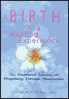 Birth as a Healing Experience: The Emotional Journey of Pregnancy Through Postpartum - Lois Halzel Freedman, J. Dianne Garner