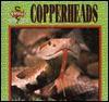 Copperheads - Eric Ethan