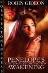 Penelope's Awakening - Robin Gideon