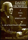 David Howell: A Pool Of Spirituality; A Life Of David Howell (Llawdden) - Roger Brown