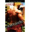 Demolishing Mr. Perfect - Ashlyn Chase