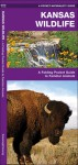 Kansas Wildlife: A Folding Pocket Guide to Familiar Species - James Kavanagh, Raymond Leung