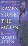 Raven Stole the Moon - Garth Stein