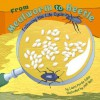 From Mealworm to Beetle: Following the Life Cycle - Laura Purdie Salas, Jeff Yesh
