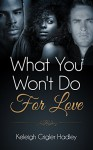 What You Won't Do for Love - Keleigh Crigler Hadley
