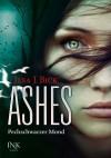 Ashes - Pechschwarzer Mond - Ilsa J. Bick