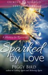 Sparked by Love: A Holiday For Romance - Peggy Bird