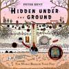 Hidden Under the Ground: The World Beneath Your Feet - Peter Kent