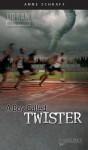A Boy Called Twister (Urban Underground #3) - Anne Schraff
