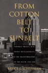 From Cotton Belt to Sunbelt: Federal Policy, Economic Development, and the Transformation of the South 1938-1980 - Bruce J. Schulman