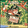 Peek Through Board Books: In The Jungle - Steve Lavis