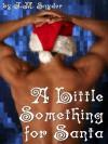 A Little Something for Santa - J.M. Snyder