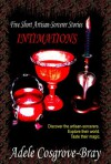 Intimations: 5 Short Artisan-Sorcerer Stories - Adele Cosgrove-Bray