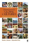 Understanding Global Cultures: Metaphorical Journeys Through 29 Nations, Clusters of Nations, Continents, and Diversity - Martin J. Gannon, Rajnandini K. Pillai