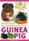 Guinea Pig - Amanda O'Neill