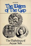 The Waters of the Gap: The Mythology of Aquae Sulis - R.J. Stewart