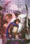 The Stowaway (Forgotten Realms: Stone of Tymora, #1) - R.A. Salvatore, Geno Salvatore