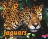 Jaguars - Jennifer L. Marks, Gail Saunders-Smith