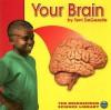 Your Brain - Terri DeGezelle, Terri