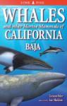 Whales and Other Marine Mammals of California and Baja - Tamara Eder, Ian Sheldon