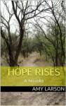 Hope Rises (The Hope Rises Series) - Amy Larson