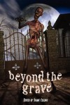 Beyond the Grave - Steven Gepp, Shane R. Collins, Lee Clark Zumpe
