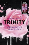 Trinity - Brennendes Verlangen (Die Trinity-Serie, Band 5) - Audrey Carlan, Christiane Sipeer
