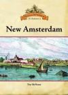New Amsterdam - Tim McNeese