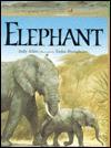 Elephant - Judy Allen, Tudor Humphries