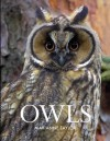 Owls. by Marianne Taylor - Marianne Taylor