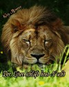 Der Löwe schläft heut Nacht - Doris Lösel, Kay Monroe