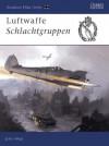 Luftwaffe Schlachtgruppen - John Weal