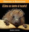 Como Se Siente al Tocarlo? = How Does It Feel? - Bobbie Kalman